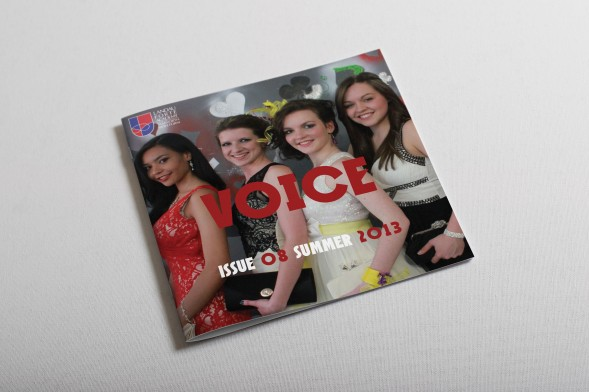 Voice - Summer 2013 (Preview)